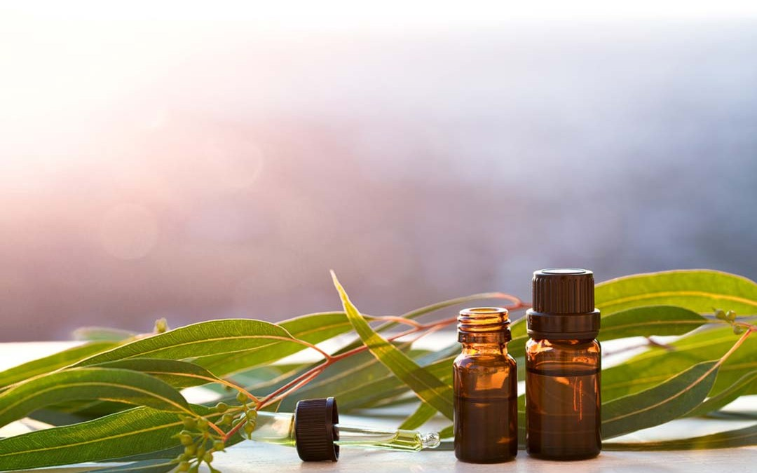 Aromatherapy & Essential Oils to Support the Lymphatic System